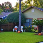 Où trouver un prestataire paysagiste ou un jardinier pour aménager son jardin?